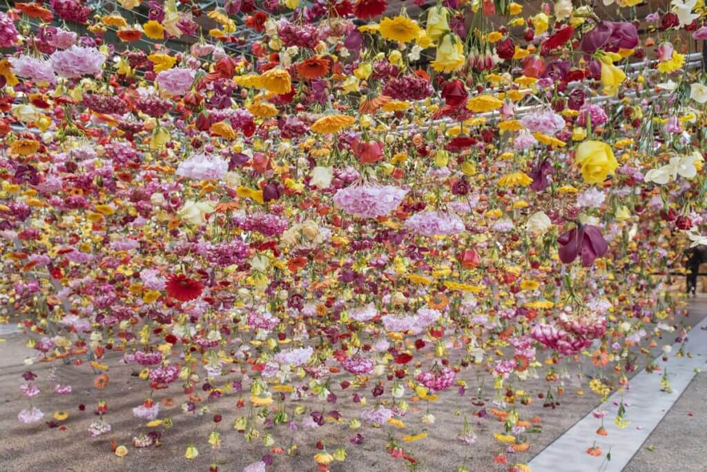 bikini berlin flowers