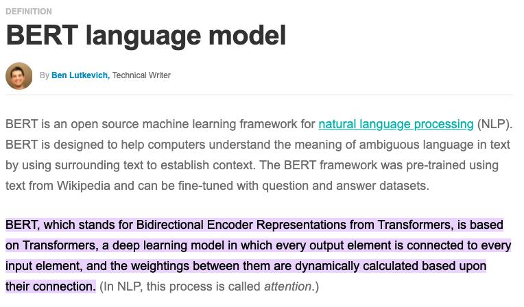snippet from website describing the BERT algorithm update
